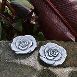 Wunderschöne Stück 2 Steinblüte Blume Rose Steinrose Steinguss Gartendeko frostfrei