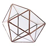 Prettyia Glasterrarium Tischplatte Geometrische Glas Pflanzgefäß Sukkulenten Pflanztopf Box Weihnachtsgeschenk, Größen Auswählbar - 17 x 17 x 17cm Kupfer