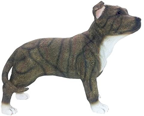 Staffordshire Bull Terrier Decorative Ornament Pet Dog Figurine by Lesser & Pavey