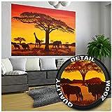 GREAT ART XXL Poster - Sonnenuntergang in Afrika - Wandbild Dekoration Tier Silhouetten Natur Deko Steppe Wanddekoration Landschaft Savanne Motiv Fotoposter Wandgestaltung (140 x 100 cm)