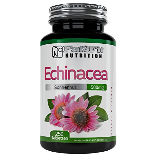 Echinacea 500mg - 250 Tabletten von Fat2Fit Nutrition Die preiswerte Alternative