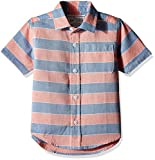 The Children's Place Baby Boys' Short Sleeve Striped Oxford Button-Down Shirt (2060652_Pasionfrut_18-24M)