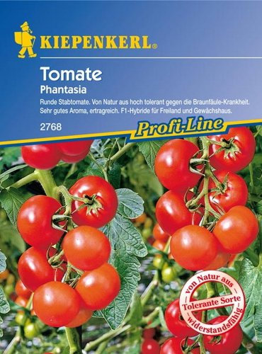 Tomate 'Phantasia'