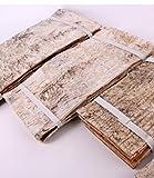 5 Stück Natur Birkenrinden Platten im Bündel geschnürt. Länge 34cm x Breite 22cm