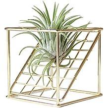 Chengstore Soporte para plantas de aire de estilo rústico de metal de doble capa con forma