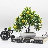 Myzixuan Frutta di Simulazione Vento Rustico in Vaso Piccolo Ornamenti Decorazioni di plastica Fiore Bonsai Office Living ostello Reception