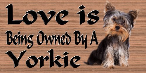 Dog Plaque Wood Sign Yorkie by Dream Merchants International
