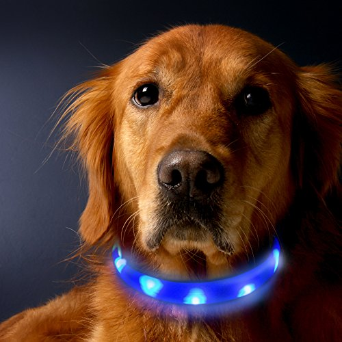 LED-Dog-Collar-LaRoo-Flashing-LED-Dog-Collar-Rechargeable-Light-Up-Pet-Cat-Safety-Collar-and-Adjustable-Size-24CM-Width-Fit-for-Large-and-Long-Hair-Dogs-Cats-and-Pets