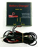 #10: DigiTronix- CAR Bike Charger/Lead Acid 12V Battery Charger - 3 Amps- B3A (Grey)