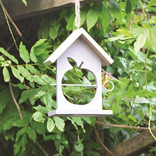 kingfisher-aussen-garten-apple-fruchte-vogel-container