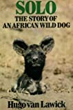 Cover of: Solo: Story of an African Wild Dog | Hugo Van Lawick
