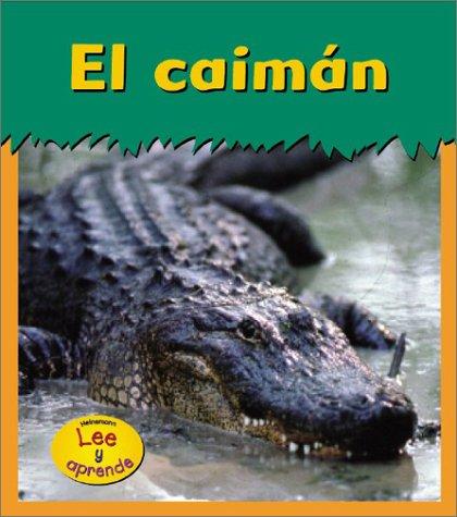El Caiman / Alligator (Animales Del Zoologico)