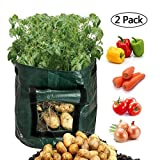 Scoolr, confezione da 2 borse per la coltivazione di patate, da 26,5 litri, borsa con finestra di areazione apribile per coltivare ortaggi come patate, carote, cipolle, pomodori, 33cm x 35cm