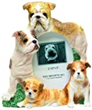 Bulldog Picture Frame Holds Your Favorite 3 x - Best Reviews Guide
