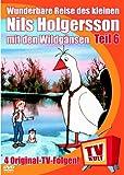Wunderbare Reise des kleinen Nils Holgersson mit den Wildgänsen, DVD-Videos, Tl.6 : Die Natter Hilflos; Der hartherzige Bauer; Bei den Bären; Uppsala, 1 DVD