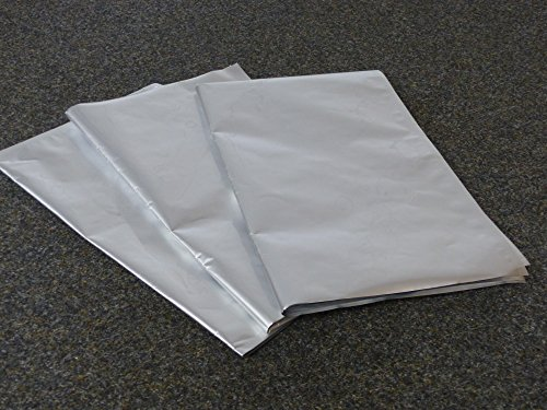 10pezzi-cinghia-tracolla-sacchetto-isolante-alluminio-verbund-zum-compresi-bianchi-conservare-traspo
