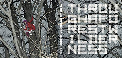 THROUGH A FOREST WILDERNESS: Aktionen im Wald. Performance, Konzeptkunst, Events. Actions in the Forest. Performance, Conceptual Art, Events. 1960 - ∞