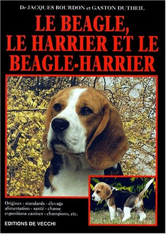 Le beagle, le harrier et le beagle-harrier