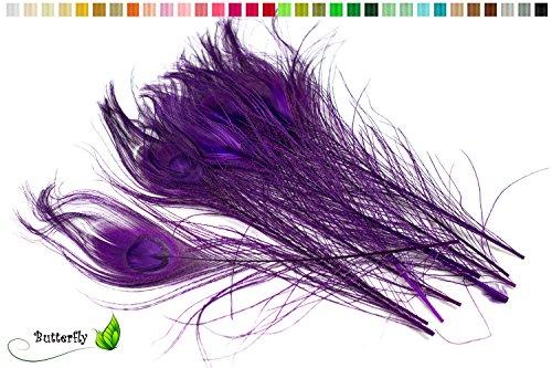 10 echte Pfauenfedern ca. 25-30cm (lila/purpur 465)//Pfau Federn Natur Auge Deko Pfauenaugen Schmuck