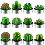 12 Stücke Kaktus Teelicht Kerzen Handgefertigt Zart Saftig Kaktus Kerzen für Party Hochzeit Spa Dekoration Geschenke (Stil C)