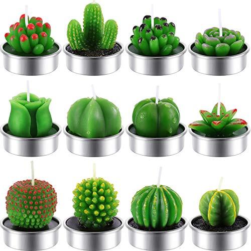 elicht Kerzen Handgefertigt Zart Saftig Kaktus Kerzen für Party Hochzeit Spa Dekoration Geschenke (Stil C) ()