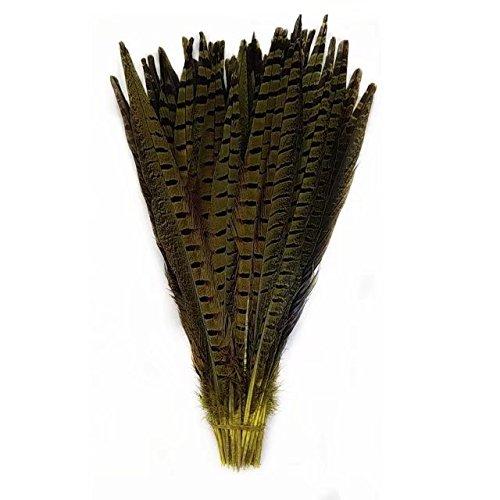 edern, natürlich, zum Basteln, Schwanzfedern, 30,5-35,6cm, 10 Stück gelb ()