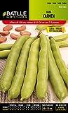 Semillas Leguminosas - Haba Carmen 5kg - Batlle