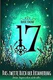 17 - Das zweite Buch der Erinnerung von Rose Snow