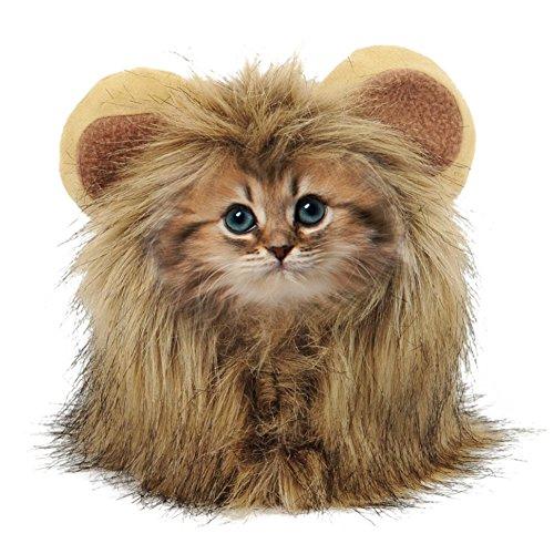 AIHOME Süße Löwenmähne Haustier Kostüm Löwe für Kleine Hunde Katze Halloween Karneval mit Ohren