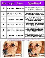 Jwpc réglable Anti-biting Chien doux Gel de silice Muselière, respirant de sécurité pour animal domestique Chiot Muselières Masque pour mordre/Aboyer/mastication
