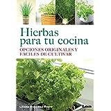 Hierbas Para Tu Cocina: Opciones Originales y Faciles de Cultivar