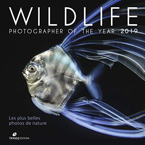 Wildlife Photographer of the Year 2019 : Les plus belles photos de nature par Collectif
