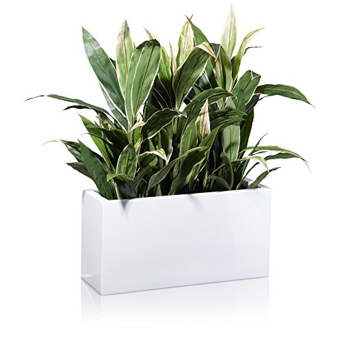 plant-pot-plant-trough-visio-plant-pot-made-of-fibreglass-flowerpot-fibreglass-colour-high-gloss-whi