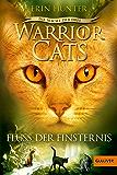 Warrior Cats - Die Macht der drei. Der Fluss der Finsternis: III, Band 2