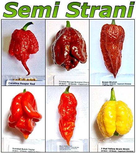 60 Reinen Samen Der 6 Heißesten Chili In Der Welt Kollektion 6: Carolina Reaper, Moruga, Tbt, Etc