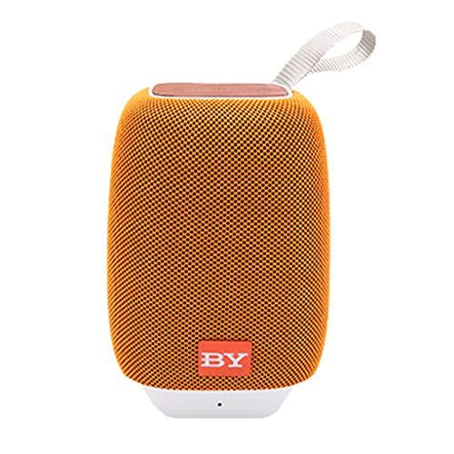 Laile Bluetooth-Lautsprecher führte tragbaren Mini drahtlosen Lautsprecher-Spieler USB-Radio FM MP3-Musik-Spalte,Verwendet Bluetooth 5.0-Technologie für Nahtlose Geräteverknüpfung