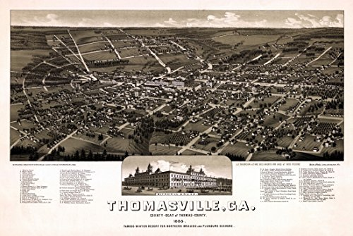 antique-map-of-thomasville-georgia-1885-thomas-county-fine-art-print-4572-x-6096-cm