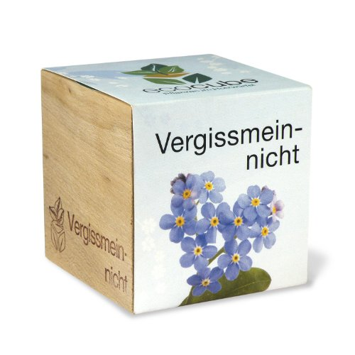 ecocube Holzwürfel - Vergissmeinnicht