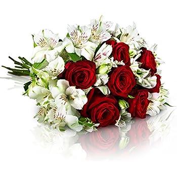 miflora blumenstrau 20 rote rosen mit xxl bl tenk pfen gratis gru karte inklusive. Black Bedroom Furniture Sets. Home Design Ideas