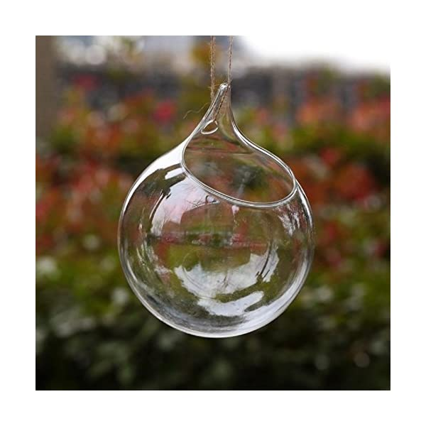 Hosaire 1X Colgante Cristal Florero Botella Terrario Hidroponico envase Decoracion Moderno Jarrón Decorativo Decor Home…