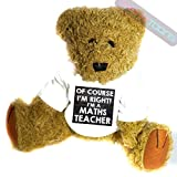 Teddybär für Mathelehrer, lustiges Geschenk