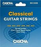 CASCHA Gitarrensaiten Konzertgitarre - Premium Nylon Saiten für Akustikgitarre und klassische Gitarre (6 Saiten-Set) - Acoustic Guitar Strings