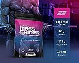 Xtreme Mass Gainer SS Powder 2722 g : Köstlicher Erdbeergeschmack - Gewichtszunahme-Protein für Muskelwachstum und Muskelerhalt - 1300 Kalorien und 63 g Protein - 8 Portionen !