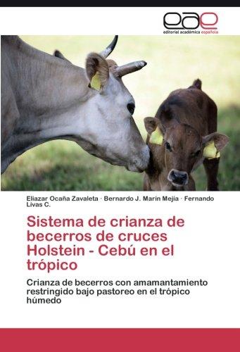 Sistema de crianza de becerros de cruces Holstein - Cebú en el trópico por Ocaña Zavaleta Eliazar