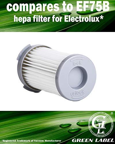 prezzo Filtro HEPA a cartuccia per gli aspirapolveri Electrolux, AEG (alternativa a EF75B, 9001959494, AEF75B, F 120). Prodotto genuino da Green Label