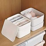 Homieco BH Aufbewahrungsbox Einfarbig Kommode Schublade Teiler Unterwäsche Socken Körbe Mülleimer Container Veranstalter Closet Self Home Dormitory, 10 Cell/weiß