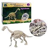 Winni43Julian Dinosauro Giocattolo Kit Archeologia per Bambini Dinosauri Fossili Giocattolo per bambini sopra i 6 anni