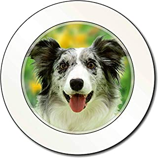 Advanta - Tax Disc Holders Blue Merle Border Collie AutovignetteGenehmigungsinhaber Geschenk