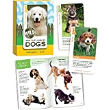 Dogs, Card Game and Book by Birdcage Press