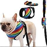 Penivo Hundegeschirr und Leinen Set, weiches Mesh atmungsaktiv Haustier Hund Weste Verstellbarer Gurt mit Poop-Tasche Sicherheit für kleine/mittlere/große Hunde (M (27cm-44cm))